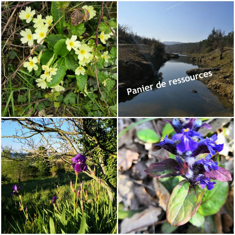Panier de printemps…