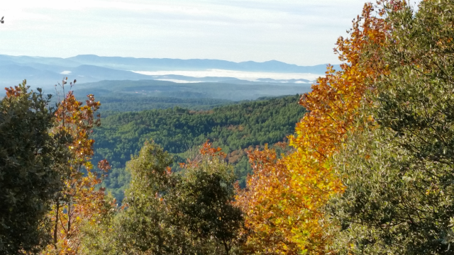 Ressources, votre panier d'automne…